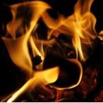 Flammehæmmere i TV + MST rapport